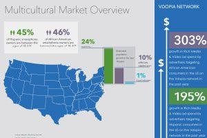 VMI Multicultural